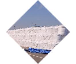 辽宁沿海盐业